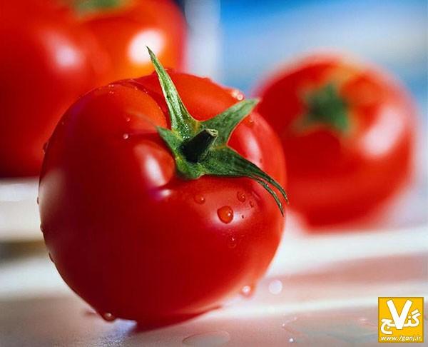 گوجه فرنگی-7ganj.ir