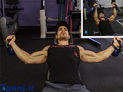 تقویت عضله سینه