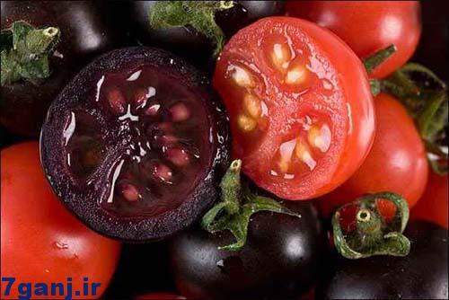 گوجه سیاه
