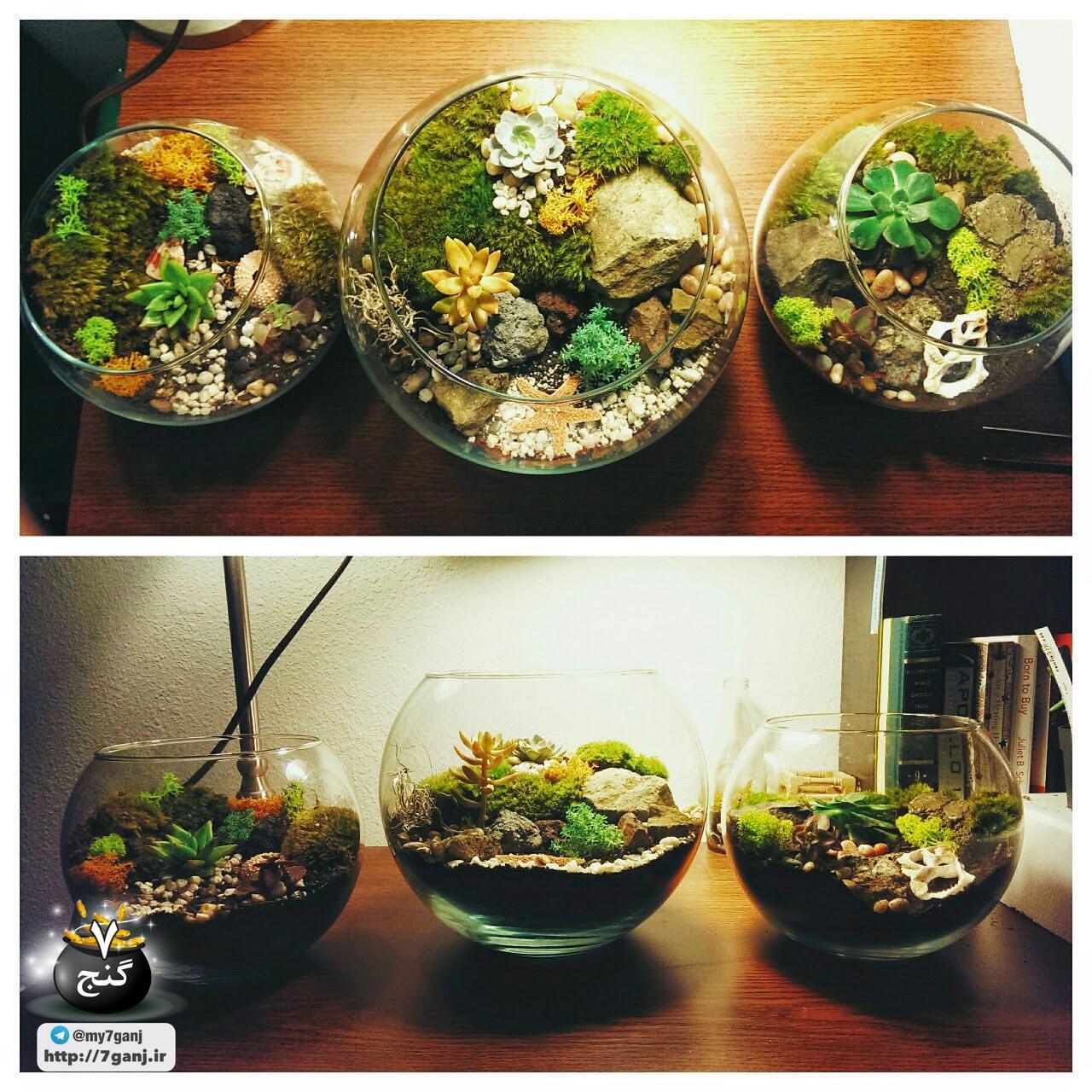 آموزش قدم به قدم ساخت تراریوم یا باغ شیشه ایتراریوم یا باغ شیشه ای