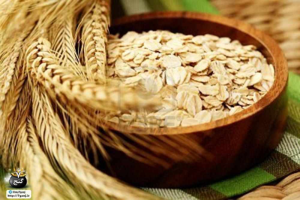 خواص و ارزش درمانی و تغذیه ای جو دو سر و نان آن