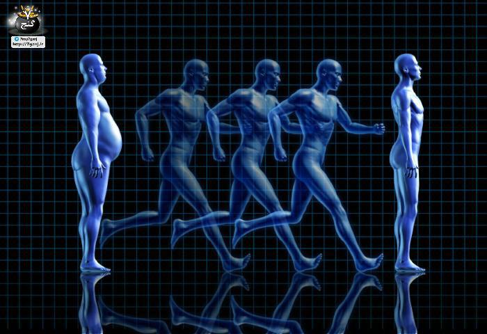 شاخص توده بدن چیست؟