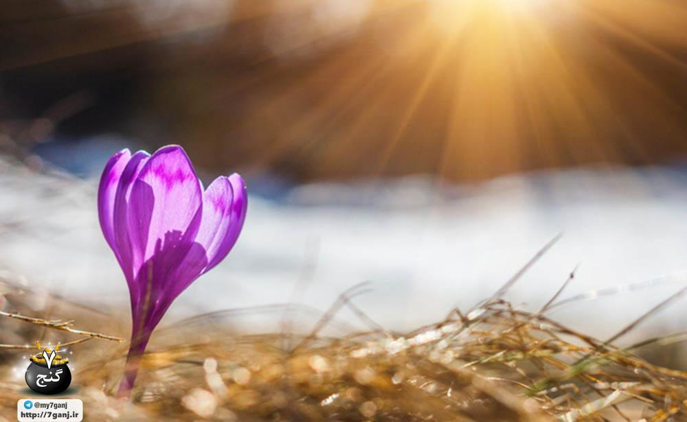 چگونه بدن مان را برای بهار آماده کنیم؟