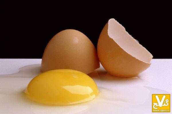 egg_162717