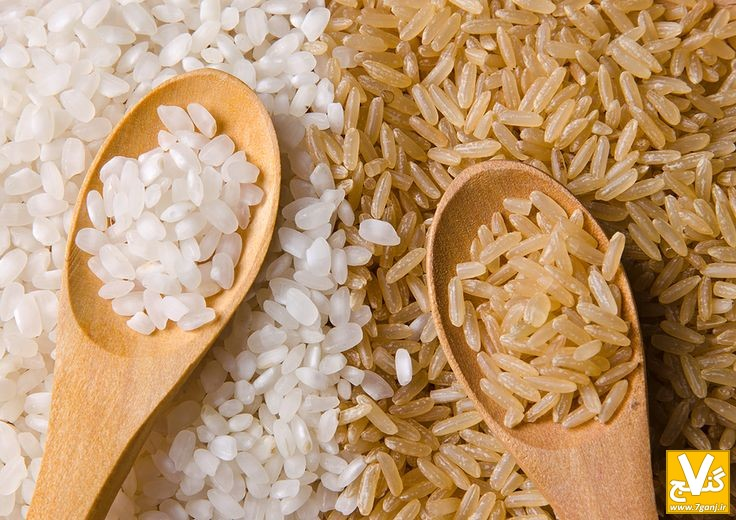 برنج - 7ganj.ir