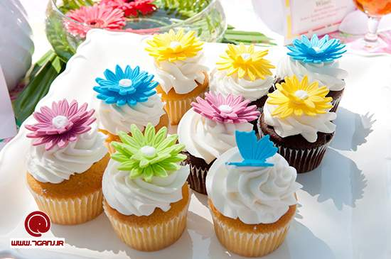 cupcake-7ganj (9)