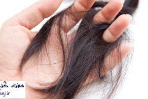 علل نازك شدن مو