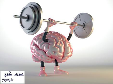 تقويت مغز