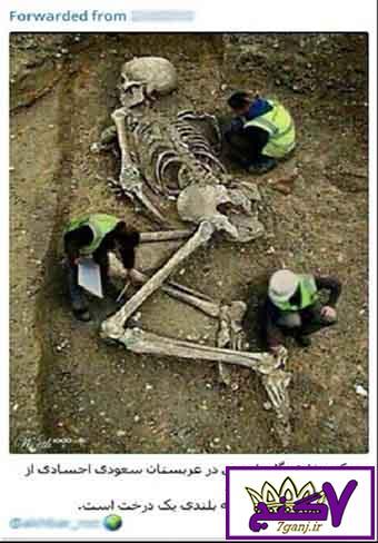 ماجرای کشف اجساد غول پیکر در عربستان