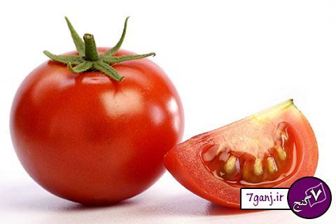 گوجه فرنگي