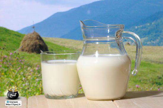 خواص شیر گاو برای نوزاد
