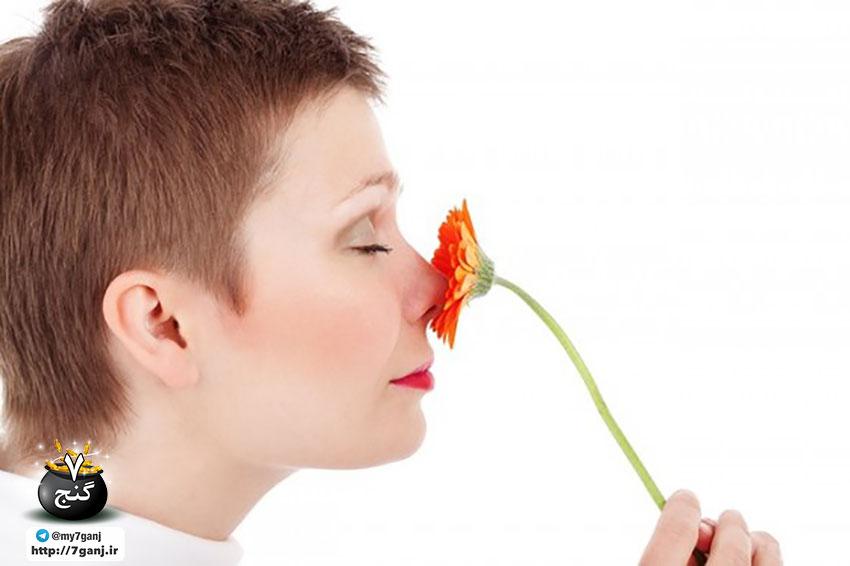 بوی واژن