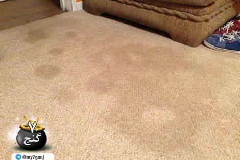 تمیز کردن فرش