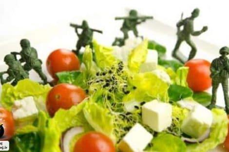رژیم غذایی نظامی