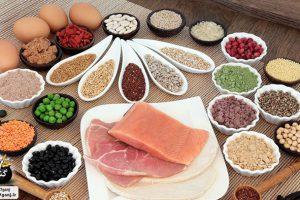 مقدار پروتئین