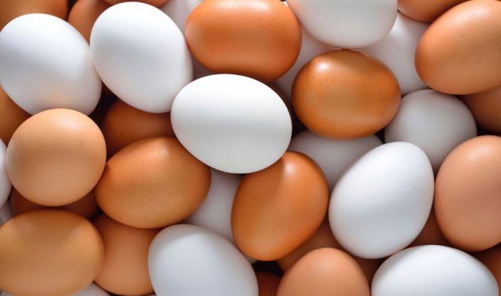 تخم مرغ درمان کم خونی