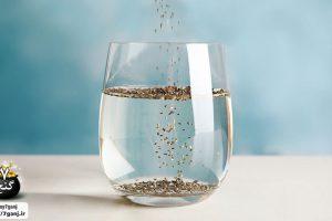 آب دانه چیا