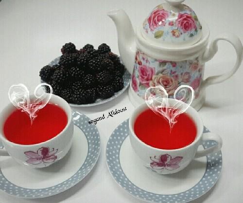 طرز تهیه چای تمشک(بلوبری)