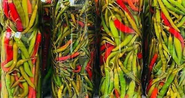 طرز تهیه ترشی فلفل سبز